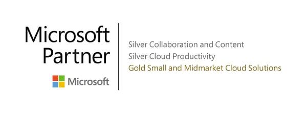 MS Partner Main Badge